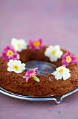 Chocolate cake decorated with primroses