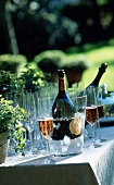 Rosé-Champagner im Eiskübel mit Champagnergläsern im Garten
