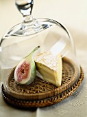 Cheese with figs under and cheese cloche