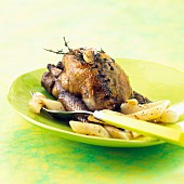 Roasted pigeon with black salsify