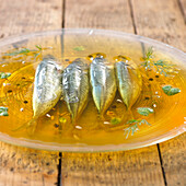 Fish in Jelly