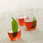 Vin de pêche (peach leaf aperitif)