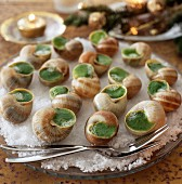 Tray of snails stuffed with parsley butter