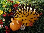 Mikados hedgehog cake