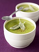 Creamed sage soup