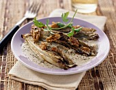 Braised chicory with roquefort sauce