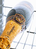 A bottle of champagne in the refrigerator