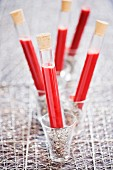Summer fruit purees in test tubes
