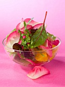 Mesclun and rose petal salad
