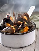 Saucepan of steaming hot mussels