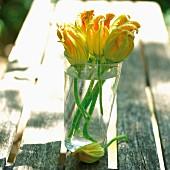 Zucchiniblüten in Wasserglas