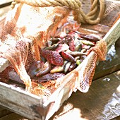 Fresh fish in a wooden crate