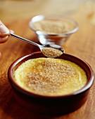 Crème brûlée with parmesan cheese
