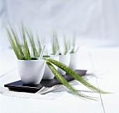 Weizenähren in Keramiktöpfen