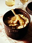 Chicken fricassée with cream sauce