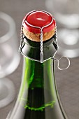 Wire-cap over the cork of a Champagne bottle