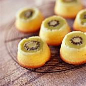 Individual kiwi and citrus fruit puddings
