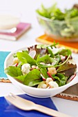 Mesclun, radish, cauliflower and shrimp salad