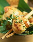 Steam-cooked scallops with ginger