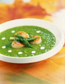 Cold asparagus soup with scallops