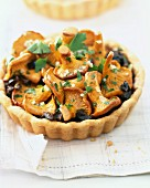 Chanterelle tartlet