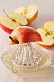 Apfelschnitze und Saftpresse
