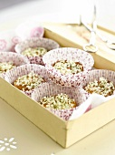 Elderflower cakes