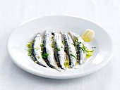 Boquerones with garlic,herbs and olive oil