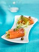 Summer salmon rolls