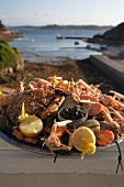 Seafood platter in Brittany