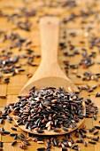 Schwarzer Reis auf einem Holzlöffel