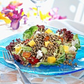 Lentil,mango,cheese and pepper salad