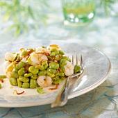 Broad bean and shrimp salad