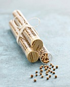 Coriander seeds in test tubes
