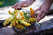 Basket of yellow zucchinis and flowers