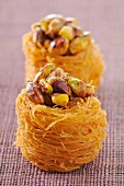 Pistachio bird nests