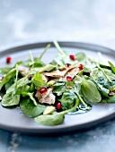 Guinea-fowl,spinach,pomagrante and pistachio salad