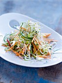 Cucumber, carrot and alfafa salad