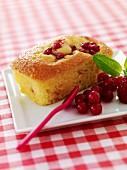 Summer fruit mini cake