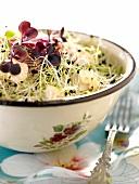 Tofu sprout salad
