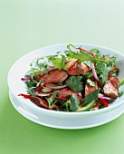 Roast beef,cilantro and red onion salad