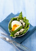 Sugar pea salad with Roquefort and soft-boiled egg
