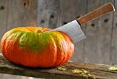 Pumpkin and chopper