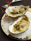 Grilled oysters with soft leeks and parmesan