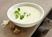 Cream of chicory soup with parmesan