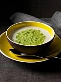 Pilzcremesuppe mit Blattsalat