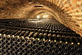 Rows of wine bottles in a cellar