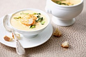 Cream of scallop soup with coconut milk and curry