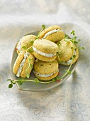 Thyme and pink peppercorn cookies filled with roquefort cream