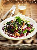 Bio-Salat mit Rotkohl, getrockneten Feigen, Walnüssen und Spinat